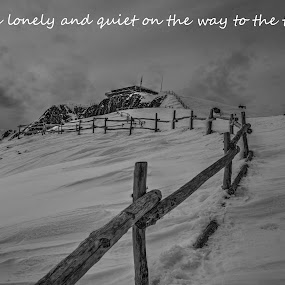 lonely by Stratos Lales - Typography Quotes & Sentences ( winter, mountain, dnoe, lonely, top )