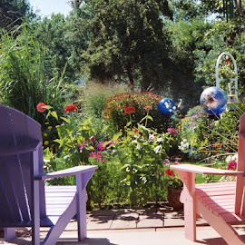by Susan O'Neall Nadolski - Nature Up Close Gardens & Produce ( Chair, Chairs, Sitting )