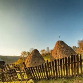 The three sisters by Daniel Alexandru - Landscapes Prairies, Meadows & Fields ( field, countryside, fence, sunset, hay, romania,  )