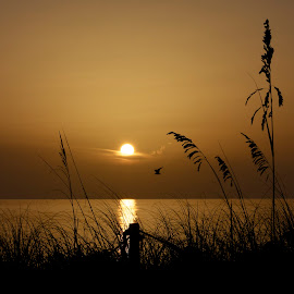 sunrise by Jim Keller - Landscapes Sunsets & Sunrises