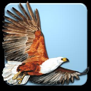 Roberts Multimedia Birds of SA