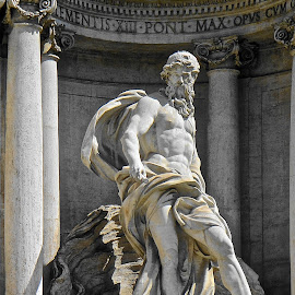 Trevi Fountain Detail by Steven Aicinena - Buildings & Architecture Statues & Monuments ( rome, trevi fountain )
