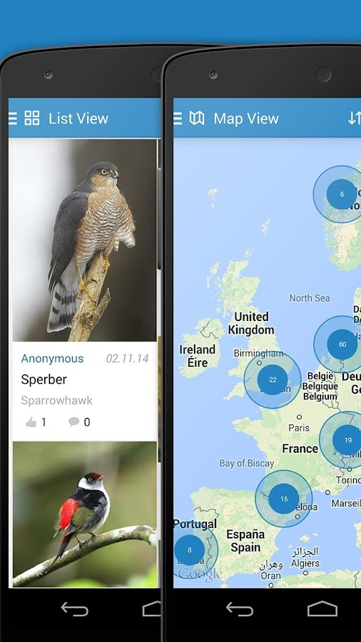 iKnow Birds 2 PRO - Europe Screenshot 6