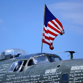 Old Glory by Nina VanDeleur - Transportation Airplanes ( b17 )
