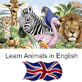 Download Learn Animal Names in English APK for Android Kitkat