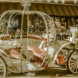 Ride on Beale by Adarryll Jackson Sr. - City,  Street & Park  Historic Districts ( beale st, memphis, horse, horse&carriage, people, blues, historic,  )