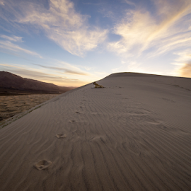 General Vito - Mojave Desert/Kelso Dunes  by Michael Keel - Landscapes Travel