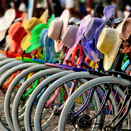 Rainbikes by Franky Go - Transportation Bicycles ( bike, colorful, rainbow, bicycle,  )