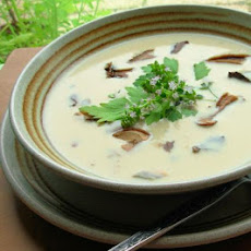 Wild Mushroom and Buttermilk Soup