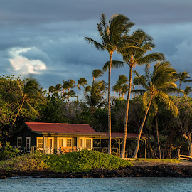The Shack by Trevor Fairbank - Buildings & Architecture Homes ( palm tree, home, hut, sunset, ocean, house, hawaii )