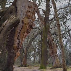 Sherwood Forest by Ruth Holt - Digital Art Places ( robin hood, ancient, sherwood, oak, forest )