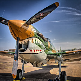 P-40N Warhawk by Ron Meyers - Transportation Airplanes
