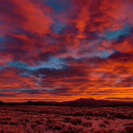 Fire in the Sky by Max Moorman - Landscapes Sunsets & Sunrises