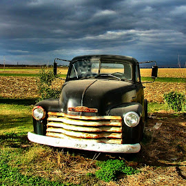 Bob's Truck by Julie Dant - Transportation Automobiles ( black trucks, abandoned trucks, old trucks, chevrolet, antique trucks, nostalgia, vehicles )