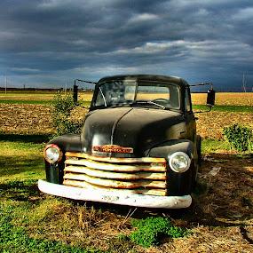 Bob's Truck by Julie Dant - Transportation Automobiles ( black trucks, abandoned trucks, old trucks, chevrolet, antique trucks, nostalgia, vehicles )