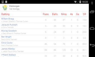 Screenshot of ECB Cricket