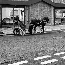 by Drew Shaw - Instagram & Mobile Instagram ( hartlepool, uk, bnw, blackandwhite, insta_bw, bnw_society, bw_lover, bw_photooftheday, photooftheday, bw, instagood, bw_society, bw_crew, insta_pick_bw, igersbnw, bwstyleoftheday, monotone, monochromatic, noir, northeast, newcastle, middlesbrough )