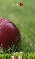 Screenshot of Cricket Ball