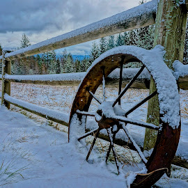 First Snow by Barbara Brock - Buildings & Architecture Other Exteriors ( wagon wheel in the snow, snow on fence, snow dusting, snowy pasture, light snow )
