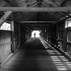 Covered Bridge in Daytime by Lou Plummer - Black & White Street & Candid ( lee county,  )