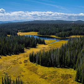 by Trevor Lott - Landscapes Prairies, Meadows & Fields