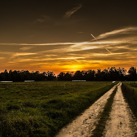 The classic view by Hendrik Mändla - Landscapes Sunsets & Sunrises ( field, green, sunset, road, evening, sun, rural )