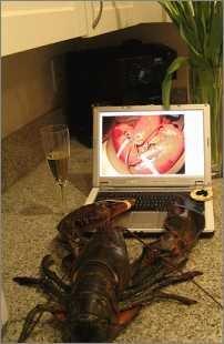 Beim Cybersex vor der Webcam bekommt der Hummer Hunger