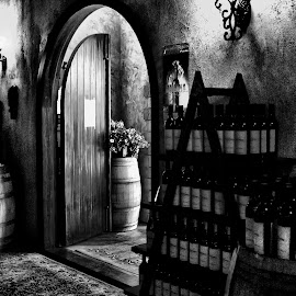 Winery door by Gaylord Mink - Buildings & Architecture Other Interior ( barrels, inside, door, bottles, winery )