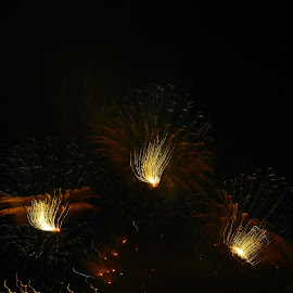 Independence by BreAnne Smith - Abstract Fire & Fireworks ( fireworks )