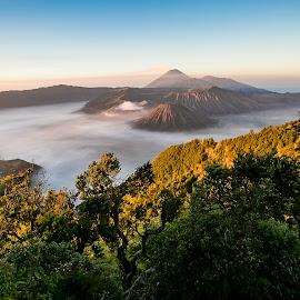 Mount Bromo Indonesia by Lefri Kristianto - Landscapes Mountains & Hills ( mountains, bromo )