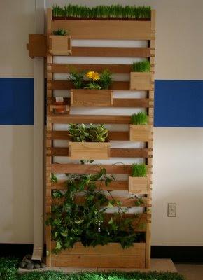 haz tu propia fachada vegetal