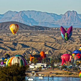 Balloons Over The River  by Tina Hailey - News & Events Entertainment ( balloons fest  river havasu az tina's capture moments butterfly lady bug american flag,  )