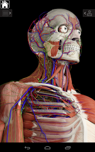 Free Download Essential Anatomy 3 APK for Samsung
