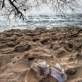 by Dipali S - Artistic Objects Clothing & Accessories ( sand, footwear, artistic, trees, object, beach )