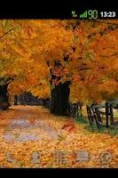 Screenshot of Old Autumn wallpaper