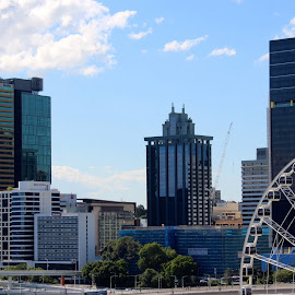 Brisbane city  by Colette Edwards - Buildings & Architecture Office Buildings & Hotels