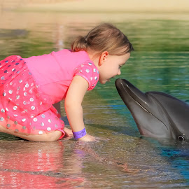 A girl with a dolphin by Marcin Frąckiewicz - Babies & Children Children Candids