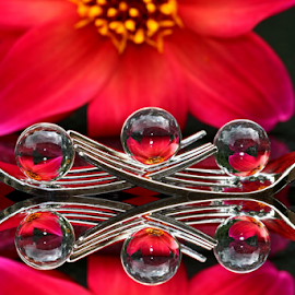 by Dipali S - Artistic Objects Other Objects ( abstract, reflection, fork, red, artistic, cutlery, spheres, refraction, flower )