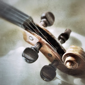 Violin by Lisa Ehrlich - Artistic Objects Musical Instruments ( violin,  )