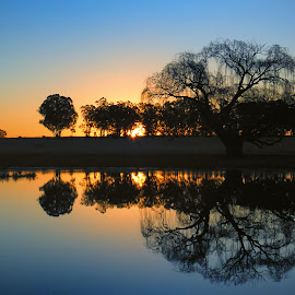 Winter Mirror by Thys Du Plessis - Landscapes Sunsets & Sunrises