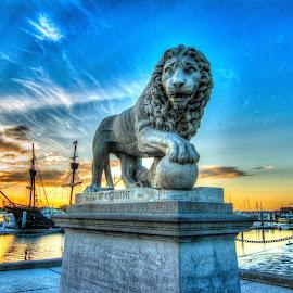 Bridge of Lions by Jason Green - Buildings & Architecture Statues & Monuments ( #staigustine #lion #florida #north florida # bridge )