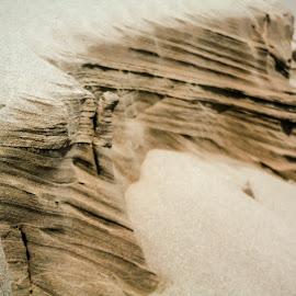 by Jeremy Elliott - Nature Up Close Sand
