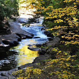 Streaming...... by Nichole Funnell - Landscapes Waterscapes ( michigan, colorful, fall, waterfall, leaves )