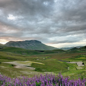 Sunrise by Fabio Ponzi - Landscapes Mountains & Hills ( mountains, green, violet, cloud, sunrise, flowers, fields )