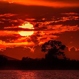 Sundown by Chris Kontoravdis - Landscapes Sunsets & Sunrises ( clouds, sky, tree, colorful, color, bushes, sunset, lake, large, sun )