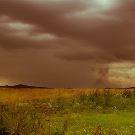Mother of all storms by Cosmin Lita - Landscapes Weather ( field, clouds, landscape, storm, evening )