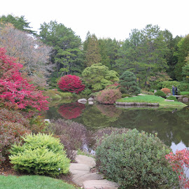 Serenity by Rachel Peak - Nature Up Close Gardens & Produce ( park, maine, serene, beautiful, autumn colors, pond )