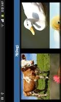 Screenshot of 동물소리 (우리 아가를 위한/Animal Sound)