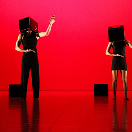 Boxes by Berci Geberle - News & Events Entertainment ( ballet dance motion opera theater ballet dancer performancecontemporary dance )