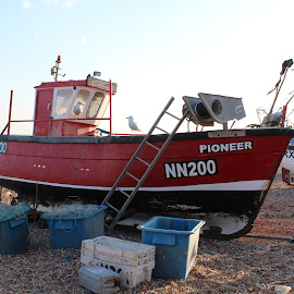 hastings Beach by Martyna Sumarti - Transportation Boats ( holiday, england, winter, boats, east sussex, travel, transportation, hastings, united kingdom, destination,  )
